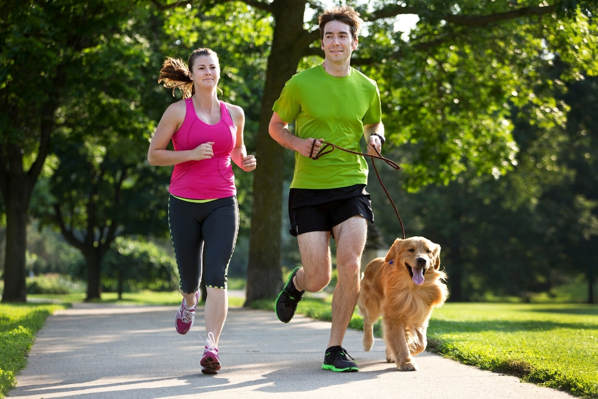Running With Your Golden Retriever